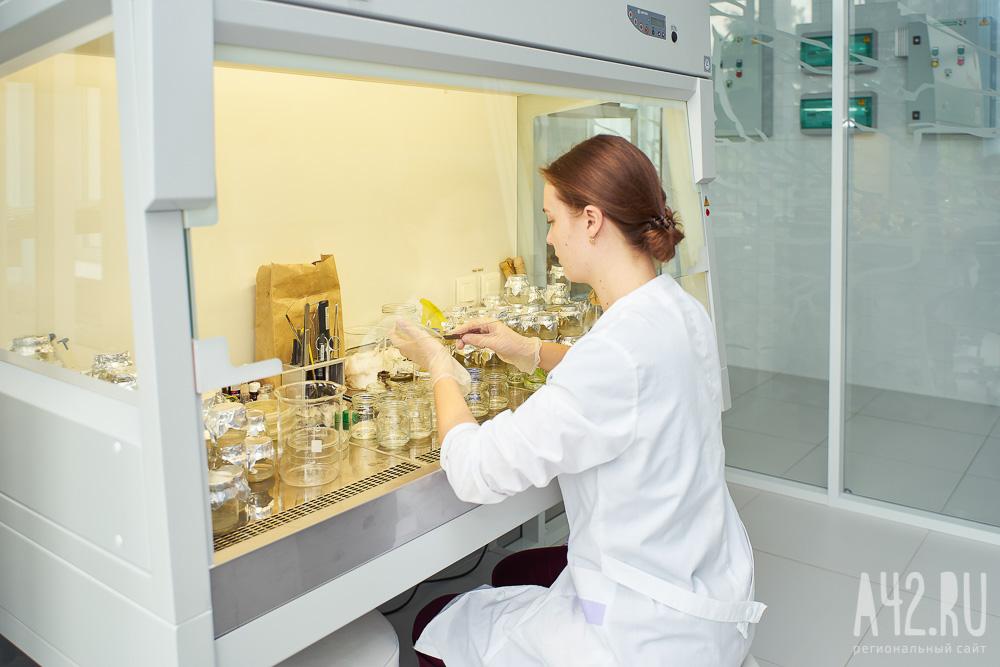 Учёные КемГУ разработали препарат на основе кластерного серебра, подавляющий жизненные функции вирусов